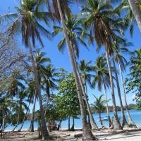 Island beach-hopping mini cruise