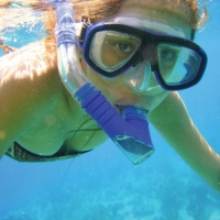 Snorkelling and Fish spotting