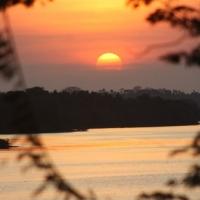 Sonnenuntergänge in den Mangrovenwäldern