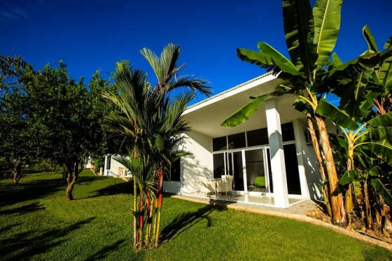 Sea-facing Bungalows with queen-sized bed and single full-size bed (for 1, 2 or 3 people)